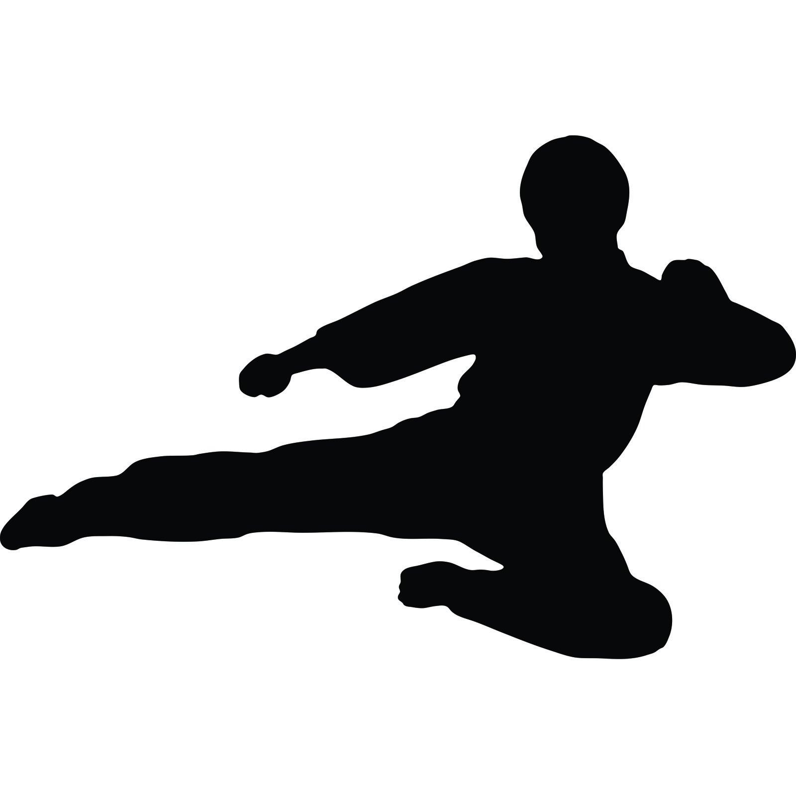 Flying karate kick silhouette www galleryhip com the