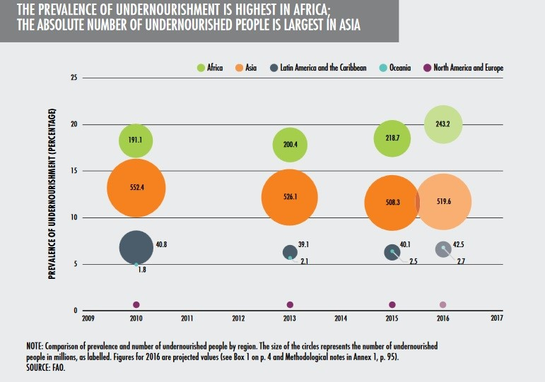 Africa Hunger Facts, Africa Poverty Facts - World Hunger News