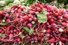 radishes-vegetable food