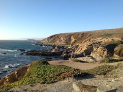 """Atop Bodega Head"" by Candy565 - Own work."