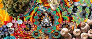 drug drugs banner acid cocaine speed lsd ecstasy mind consciousness psychedelics