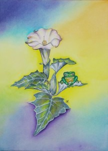 Frog by visionary artist Madeleine Tuttle