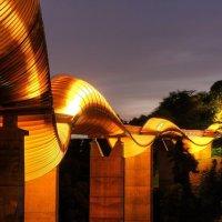 Henderson Waves Bridge - Places in Singapore