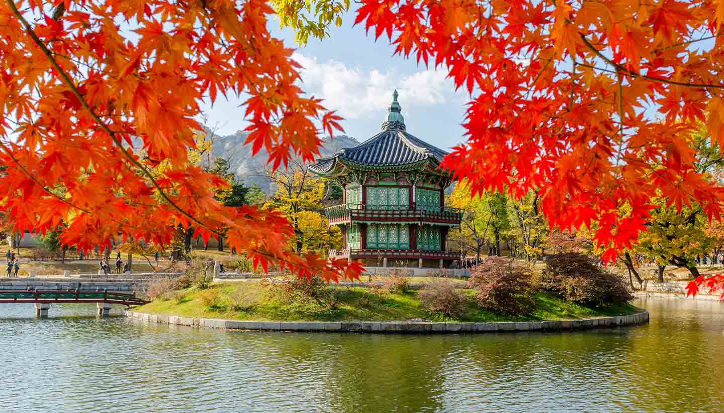 Fall Wallpaper For Computer Desktop South Korea Travel Guide And Travel Information