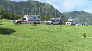 #4 —The strange death of Hawaii's Department of Health Director, Loretta Fuddy