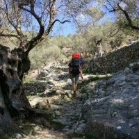 World Heritage Site: Mallorca's Sierra Tramuntana