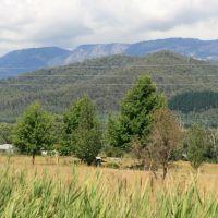 Australia: The Murray to Mountains Rail Trail