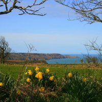 Channel Islands: Things to do in Jersey