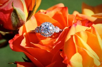 There is no bigger sign of commitment to a relationship than proposing.