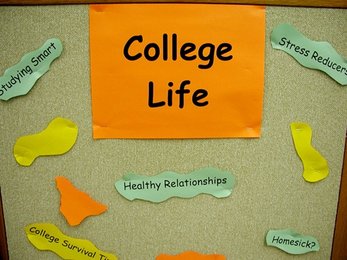 Essential Tips to Help You Succeed In College