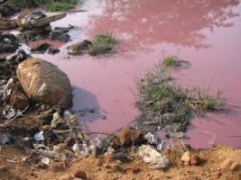 Contaminated Surface Water