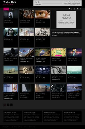 Video Hub Theme Review - RichWP IS IT GOOD ?