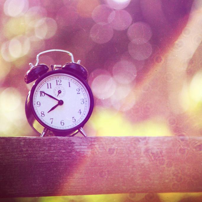 10 Great Gift Ideas for WordPress Geeks