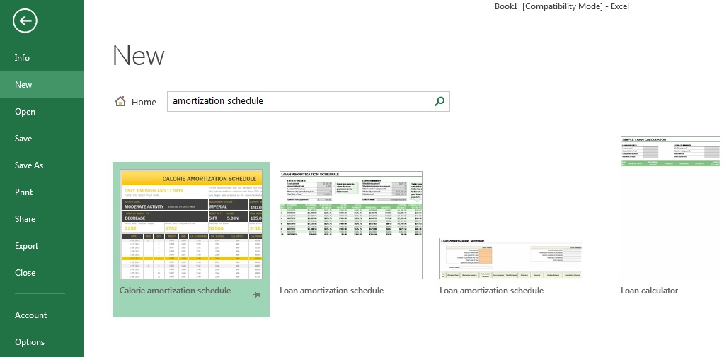 Creating Amortization Schedules Wright Accounting CPA
