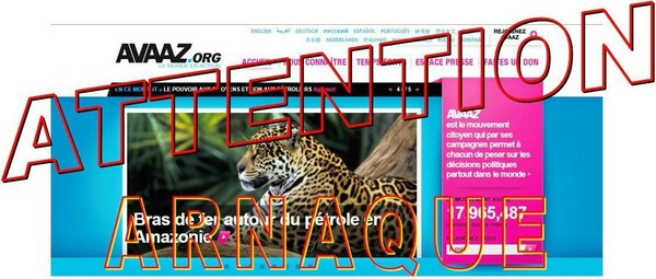 Avaaz French 2