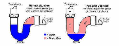 Drain Smell Sewage Stink Smelly Sink