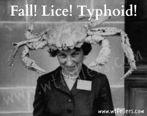 falllicetyphoid