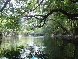 Hotchkiss Road to Mayday, Alapaha River 2016-04-23