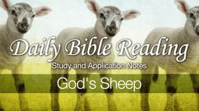 Gods-Sheep
