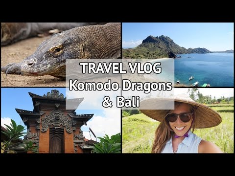 TRAVEL VLOG | My Indonesia Adventure Part 2: The Komodo Dragon Islands & Bali