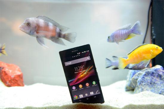 Το Sony Xperia Z βουτηγμένο μέσα σε ένα ενυδρείο
