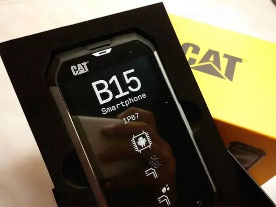 Cat B15 Caterpillar