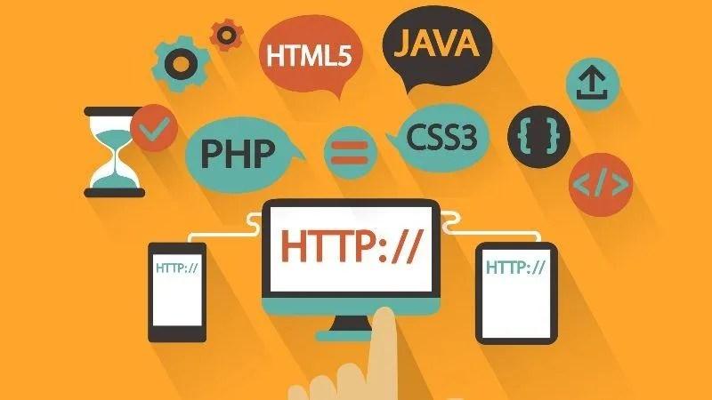 The Web Developer Bootcamp - Developer