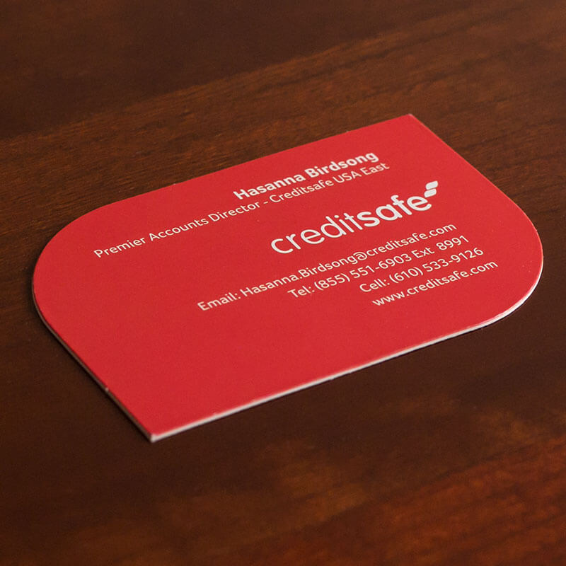 Double Thick Business Cards for Credit Reporting Company
