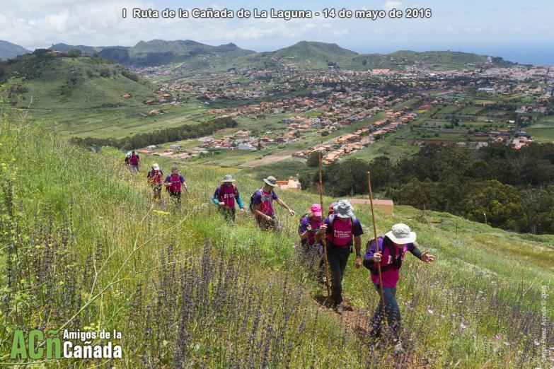 La Cañada de La Laguna - Amigos de La Cañada