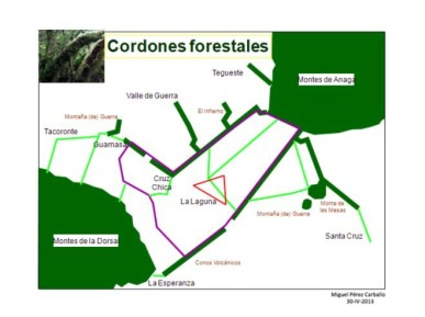 Cordones Forestales