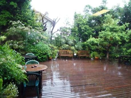 雨に濡れる中庭