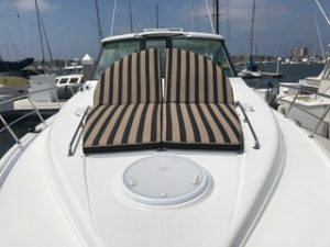 Cruisers Yachts 430 Sports Coupe Bow Cushions sunbrella berenson tuxedo