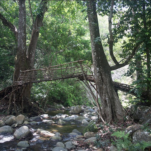 Kogui bridge in the Sierra Nevada, Colombia