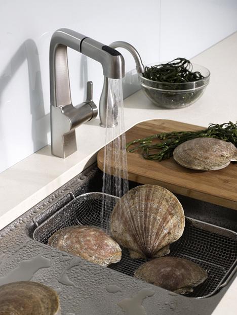 Multipurpose Sink From Kohler Yanko Design