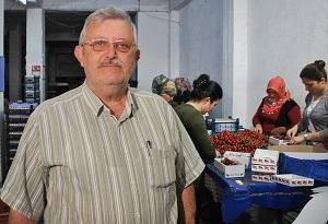 İhracatçı Mümtaz Akalın kirazda son yılların en yüksek fiyat seviyesinin yakalandığını belirtti. (Foto: Ahmet Bayram - A.A. )