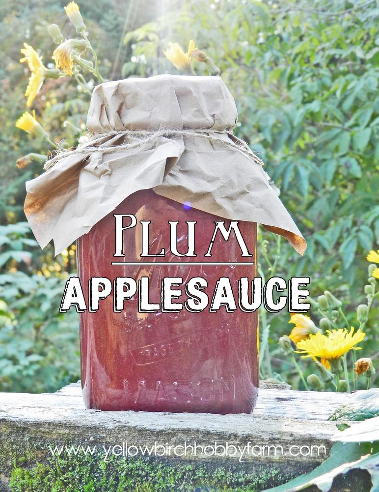 Plum Applesauce