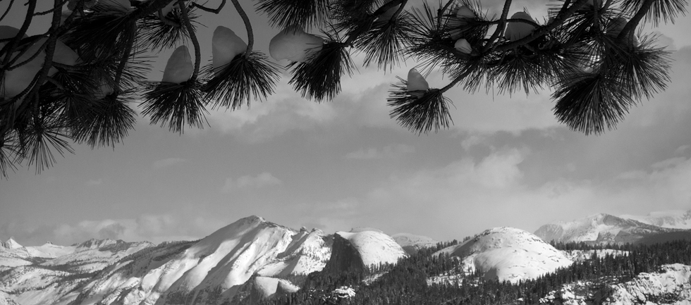 Yosemite Landscapes Photo Classes