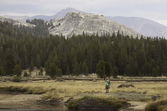 Yosemite-Landscape-YExplore-Mange-568