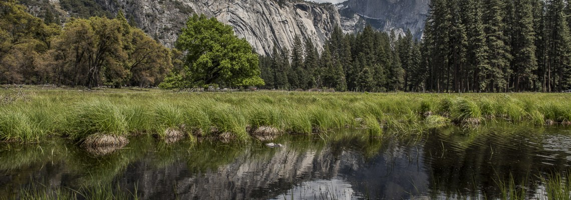 A Hiker's Guide to Half Dome in Yosemite National Park
