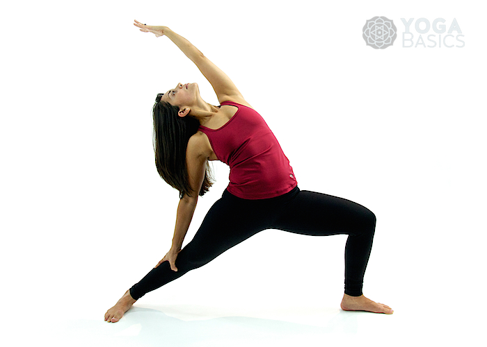 Reverse Warrior Pose O Yoga Basics
