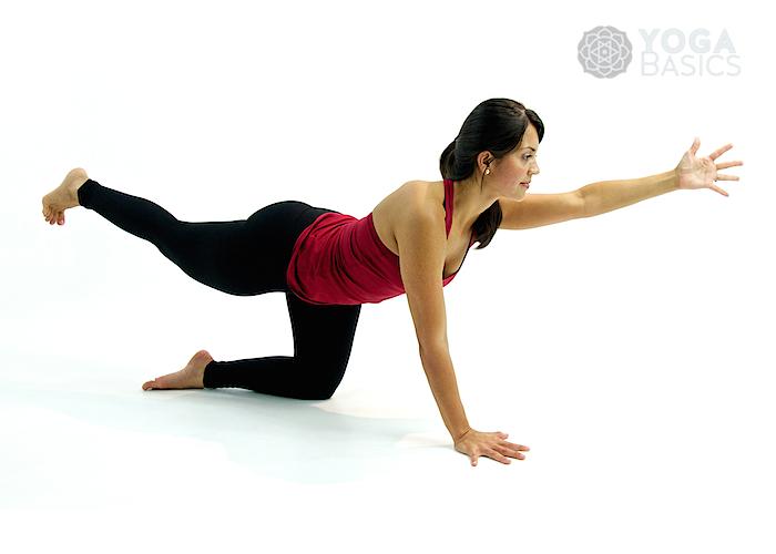 Balancing Table Pose O Yoga Basics