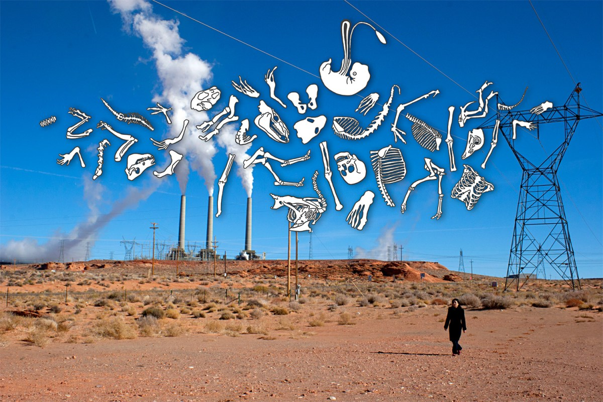 Desert Power Plant
