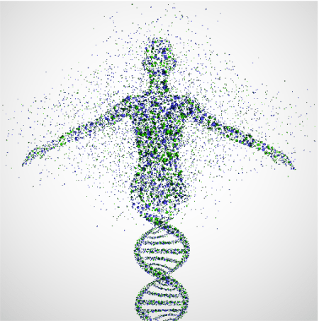 the_genome_as_a_person