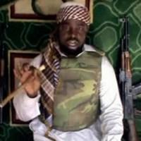 Boko Haram kill 7 civilians in north Nigeria: government