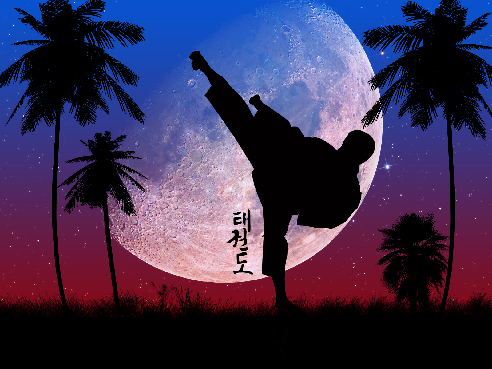 Taekwondo Itf Wallpaper 3d York All Stars Taekwondo 187 Taekwon Do By Belafon