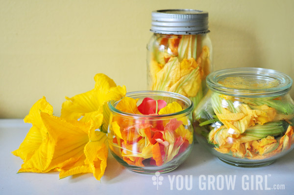 Edible Flowers stored in Jars
