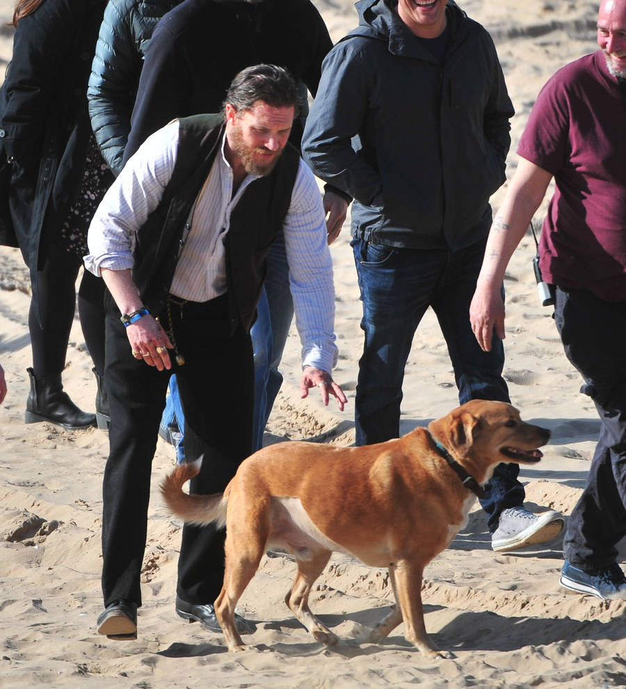 Particular Tom Hardy Mourning Loss Beloved Pet Dog Woody Young Hollywood Tom Hardy Dogs Name Tom Hardy Dog Blog bark post Tom Hardy Dog