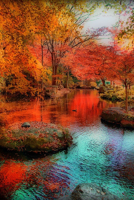 Fall Leaves Watercolor Wallpaper 13 Inspirational Autumn Pictures Youramazingplaces Com
