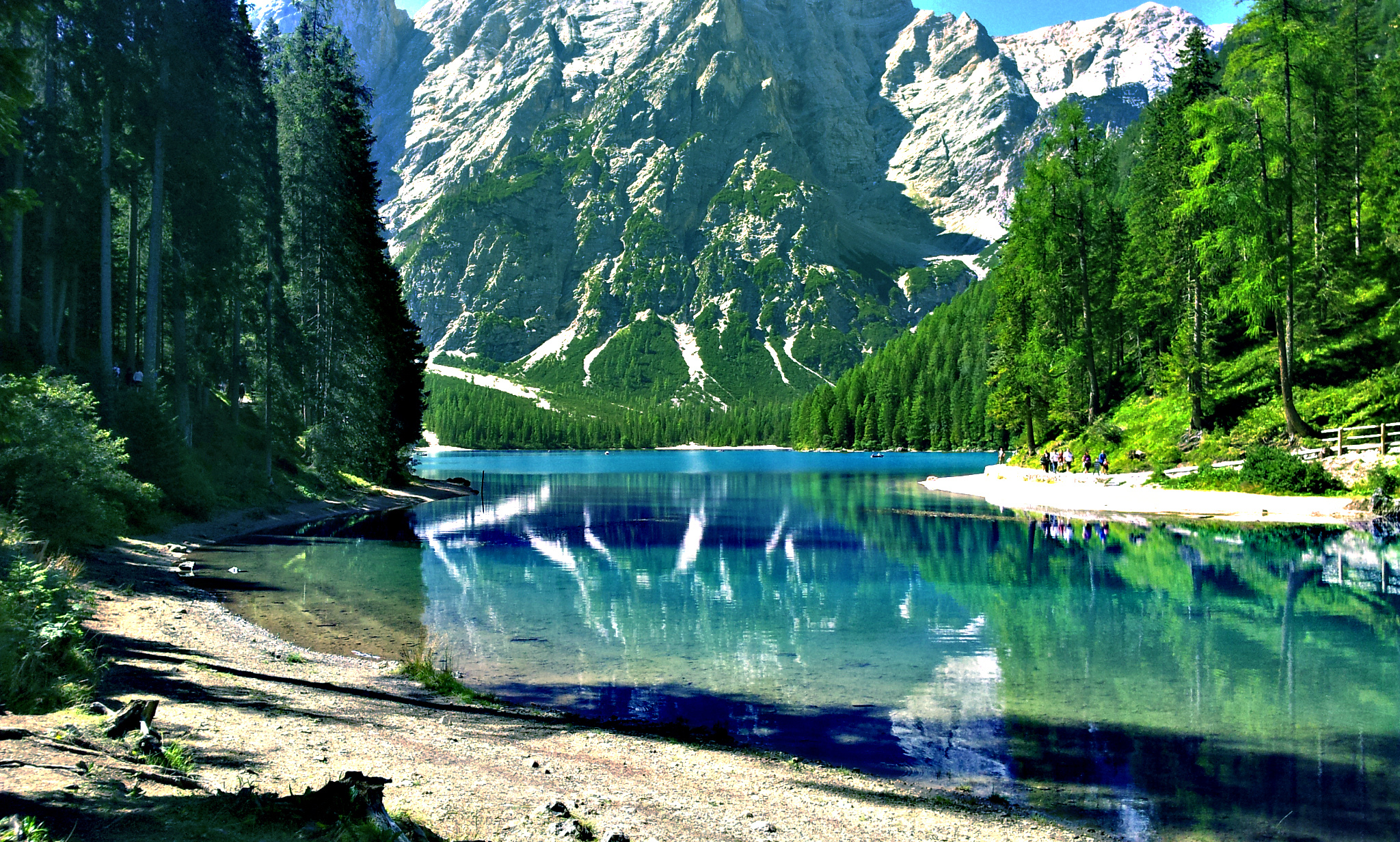 Most Beautiful Wallpapers Of Animals Relax At The Lake Braies Italy Youramazingplaces Com