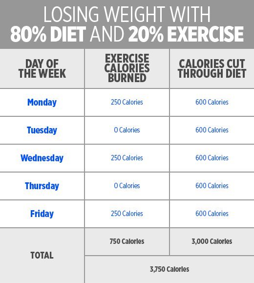 What\u0027s Better for Weight Loss Diet or Exercise? - Your Fitness Path - weight loss planner